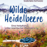 Wilde Heidelbeere